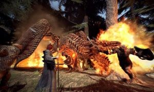 Dragons Dogma for pc