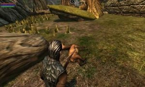 Ravensword Undaunted for pc